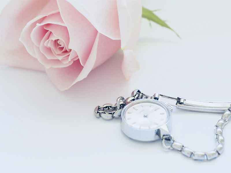 Fancy Watches and Jewelry