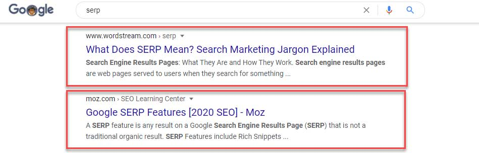 What does SERP mean