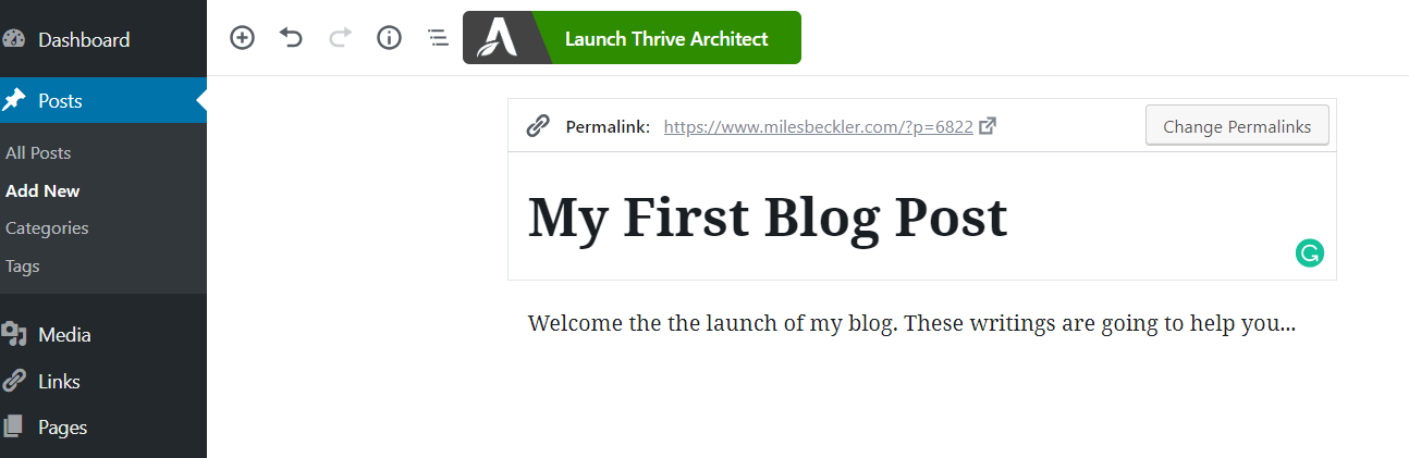 writing your first blog