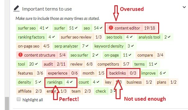 Surfer SEO Fix Your Terms