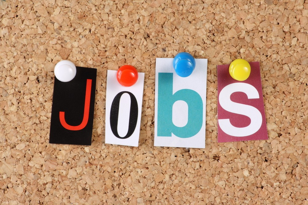 hubspot's support in job search